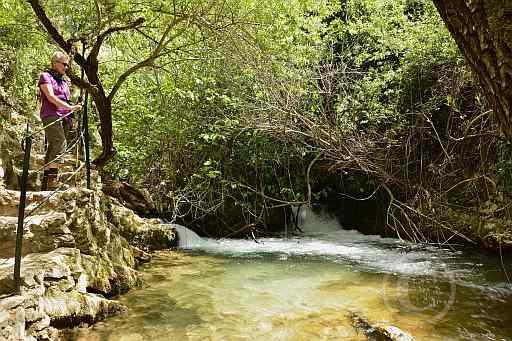 0194-Rio del Bosque