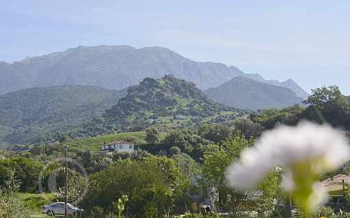 0197-Tavizna nach Castillo Aznamara