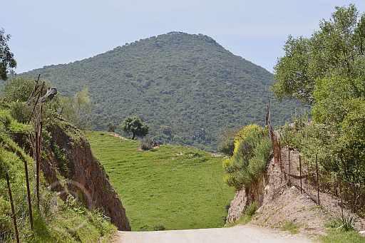 0198-Tavizna nach Castillo Aznamara