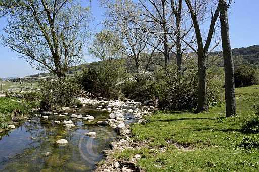 0206-Tal am Rio Guadalete