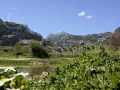 0207-Tal am Rio Guadalete