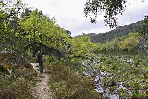 087a-Campobuches-Guadares