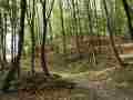 012-A 5 Weg zur Falkenburg