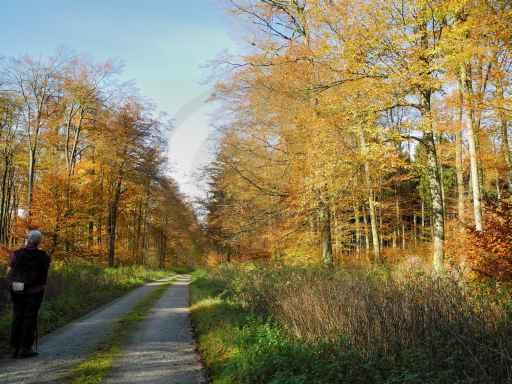 053g-Sandebeck-Bauernkamp-Sandebeck