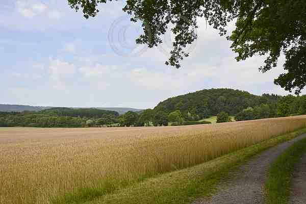 094-Merlsheim A1