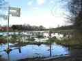 Ilmenauauen im Hochwasser-Kl-Bünstorf