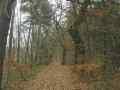 Ilmenautal-Medingen nach Bruchtorf