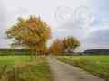 Wanderweg Bruchtorf-Elbeseitenkanal