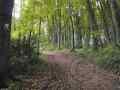 H-Weg Leeden-Bad Iburg