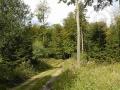 018-Landschaft am H-Weg
