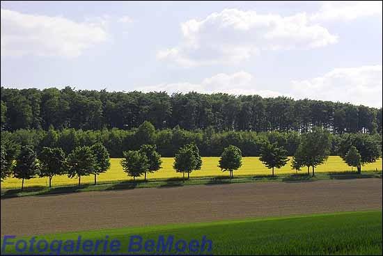 028-landschaft-roentorf