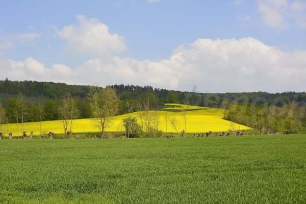 044-Kalletalpfad-Kalldorf