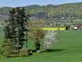 049-Kalletalpfad Blick Borlefzen