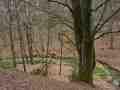 013-Rundweg A3 Furlbachtal