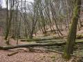 016-Rundweg A3 Furlbachtal