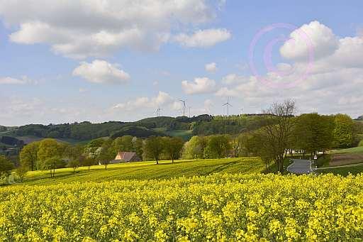 A6 Schwelentruper-Höhenweg