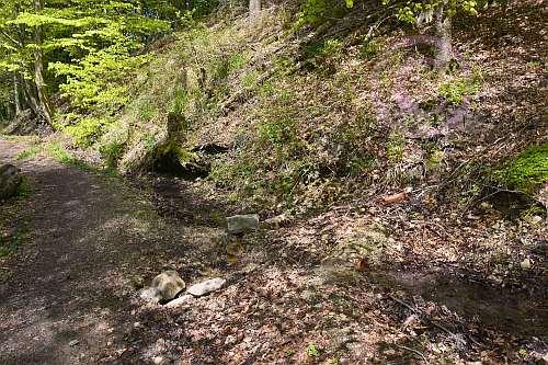 A6 Schwelentruper-Höhenweg-Quellen am Wegesrand