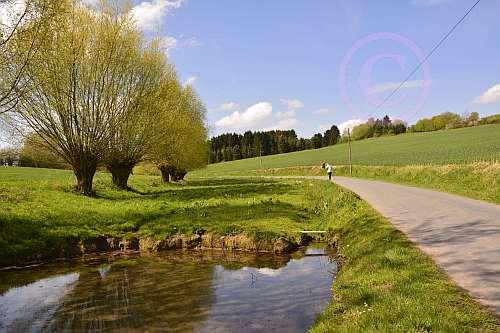 A6 Schwelentruper-Höhenweg-Schwelentrup