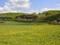 A6 Schwelentruper-Höhenweg-Blick Forellenhof