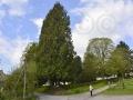 A6 Schwelentruper Höhenweg-Startpunkt Friedhof