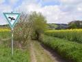 A6 Hohlweg-Naturdenkmal