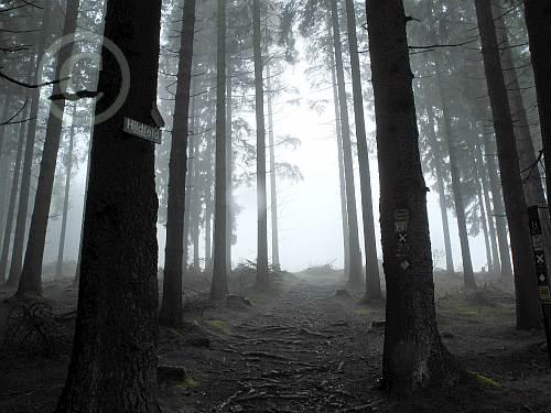 Uplandsteig-Hildfeld im Nebel