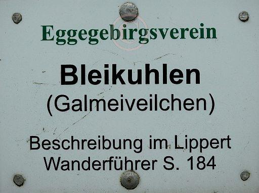 003-NSG Bleikuhlen - Blankenrode