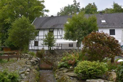 0044-Mestrenger-Mühle-Rund-Wanderweg-70