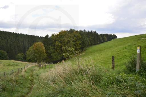 0121- 4 Tälerweg-56