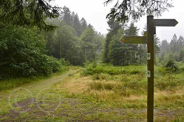 0149-Dreilägertalsperre-Struffelt Route