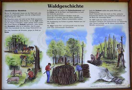 0157-Schleebachgraben-Struffeltroute