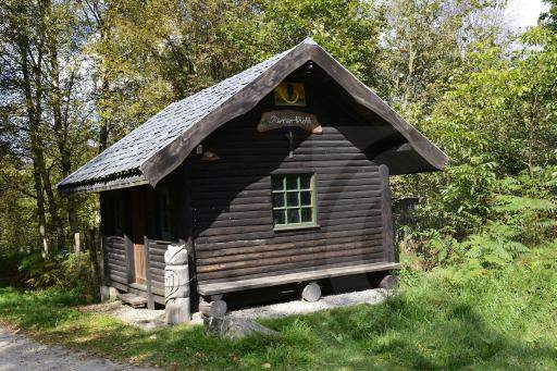0179-Hohe Venn - Belgien-Hochmoor