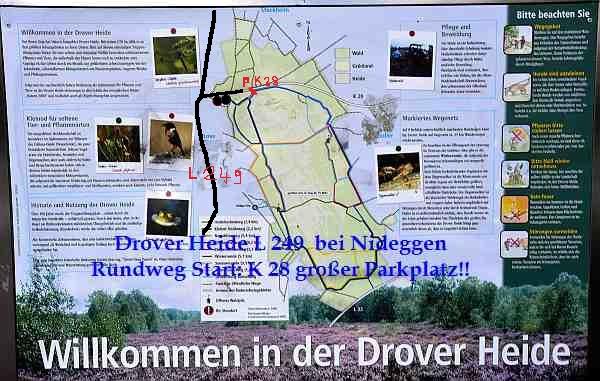 0213-NSG-Drover Heide-Rundwege Parken: K 28 großer Parkplatz