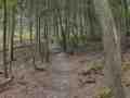 0034-Rund-Wanderweg 70 Mestrengermühle Start: Simonskall Burg