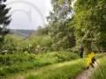 0039-Rund-Wanderweg-70