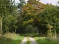 0050-Biberweg-05