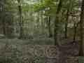 0215-Wanderweg 52 Drover Heide