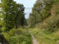 0020-Wanderweg-36-Kalltalsperre
