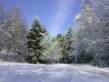 winter-018