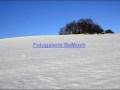 winter-022-herford-an-den-teichen_jpg