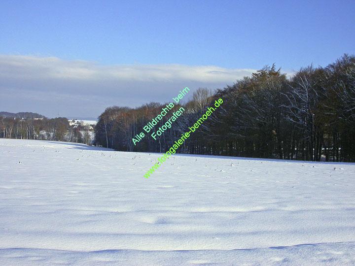 winter-011