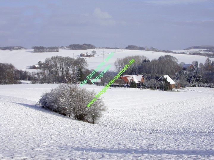winter-019