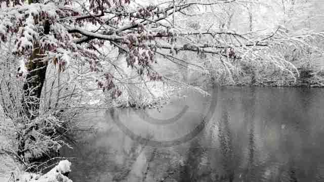 winter-038
