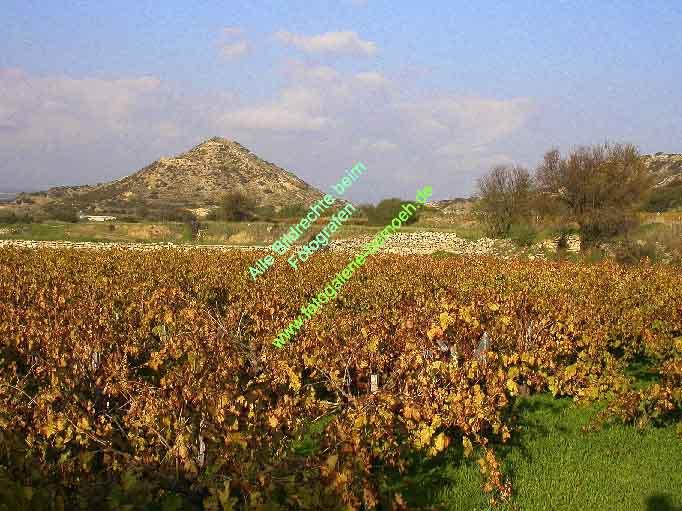 009_zypern-pissouri