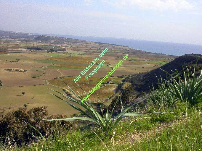 010_zypern-pissouri