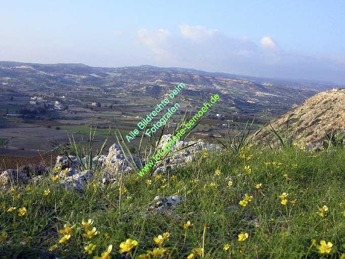 011_zypern-pissouri