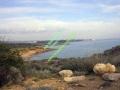 016_zypern-pissouri